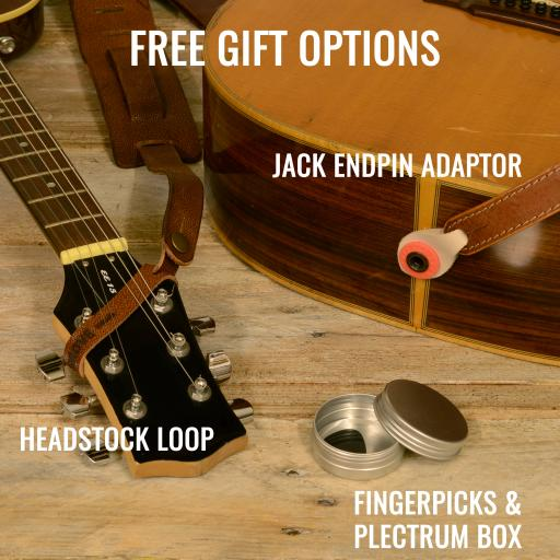 Free gift options June 2019 plectrum.jpg