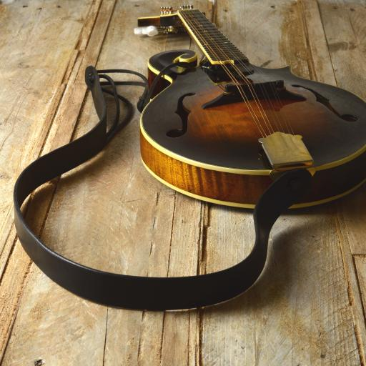 MS50 Mandolin Strap - black