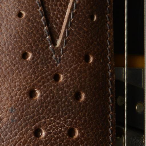 GS75 brown close up DSC_0482.jpg