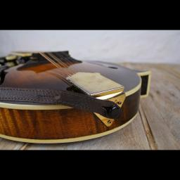 MS37 F mandolin brown 7.jpg
