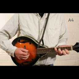 MS37 A4 mandolin brown 2.jpg