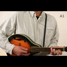 MS37 A1 mandolin black 2.jpg
