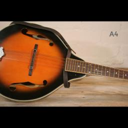 MS37 A4 mandolin brown 1.jpg