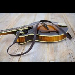 MS37 F mandolin brown 5.jpg