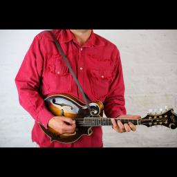 MS37 F mandolin brown 8.jpg