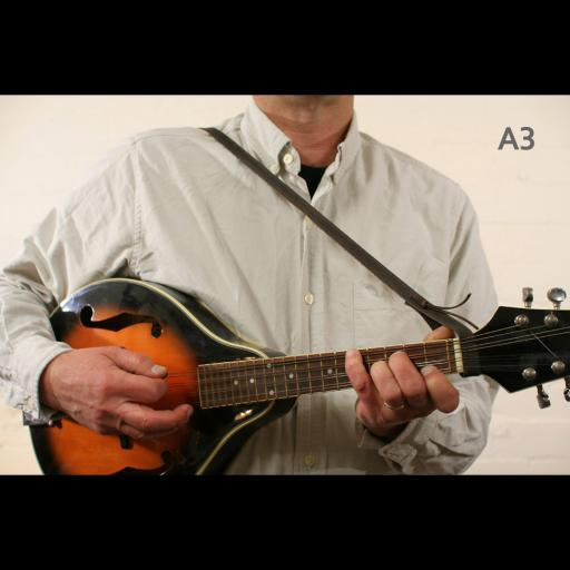 MS37 A3 mandolin brown 2.jpg