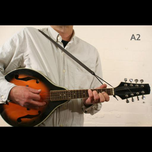 MS37 A2 mandolin brown 2.jpg