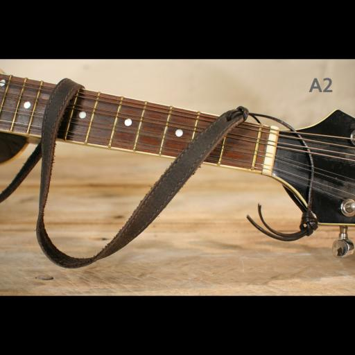 MS37 A2 mandolin brown 1.jpg