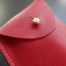 glasses pouch red 154853.jpg