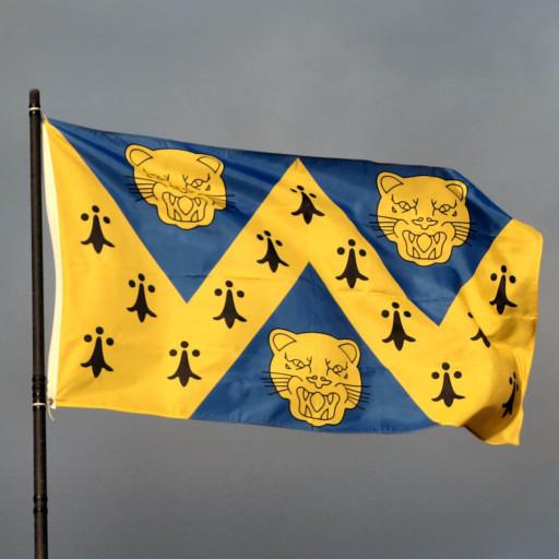 shropshire flag sq.jpg