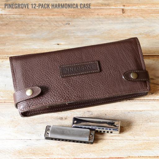 12-Pack brown DSC_0037.jpg